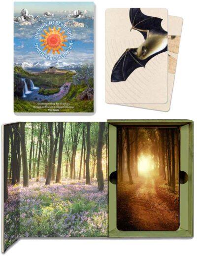 Rewilding Card set