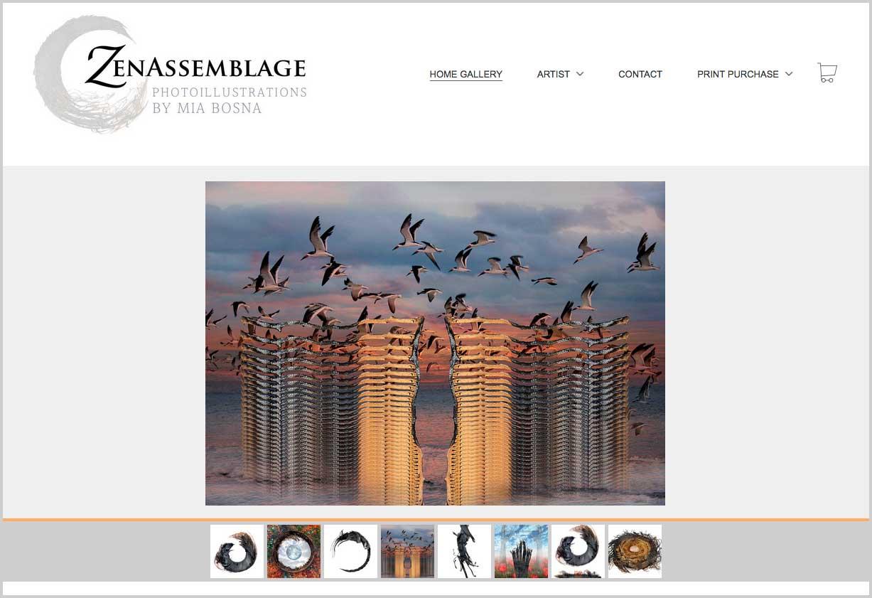 ZenAssemblage website